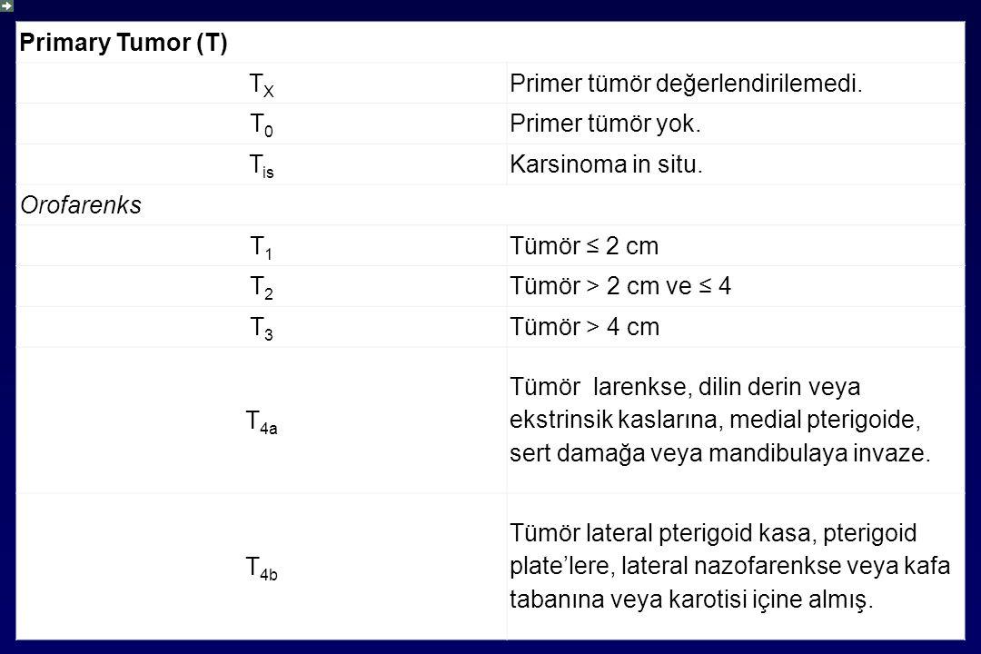 Primary Tumor (T) TXTX Primer tümör değerlendirilemedi.