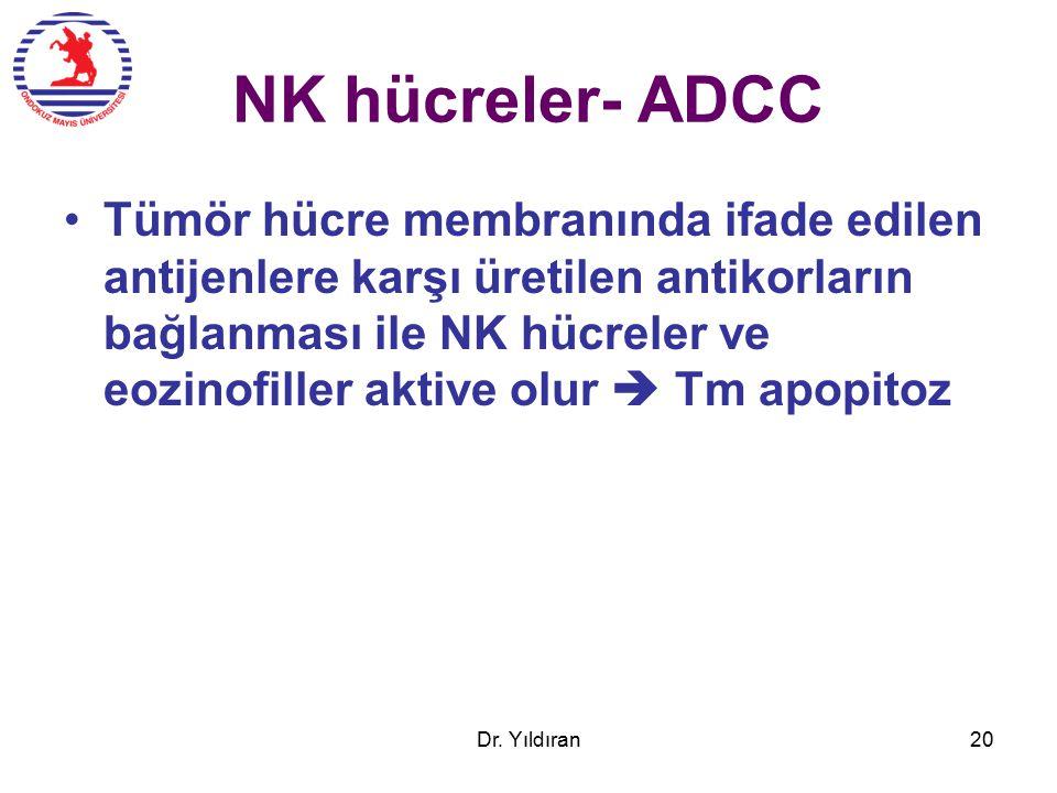 NK hücreler- ADCC Tümör hücre membranında ifade edilen antijenlere karşı üretilen antikorların bağlanması ile NK hücreler ve eozinofiller aktive olur  Tm apopitoz Dr.