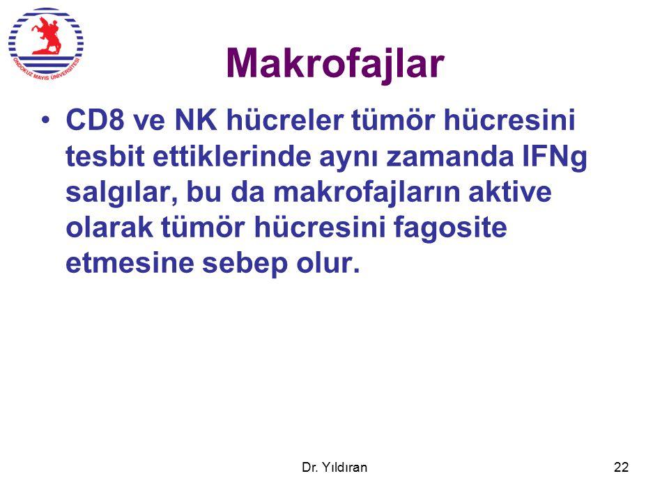 Makrofajlar CD8 ve NK hücreler tümör hücresini tesbit ettiklerinde aynı zamanda IFNg salgılar, bu da makrofajların aktive olarak tümör hücresini fagosite etmesine sebep olur.