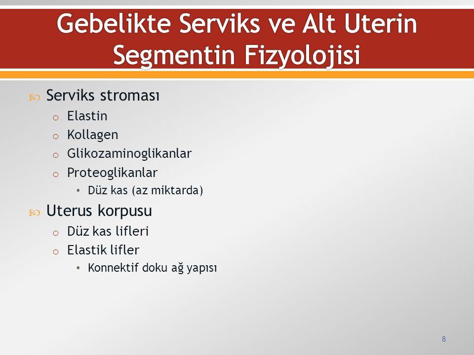  Serviks stroması o Elastin o Kollagen o Glikozaminoglikanlar o Proteoglikanlar Düz kas (az miktarda)  Uterus korpusu o Düz kas lifleri o Elastik li