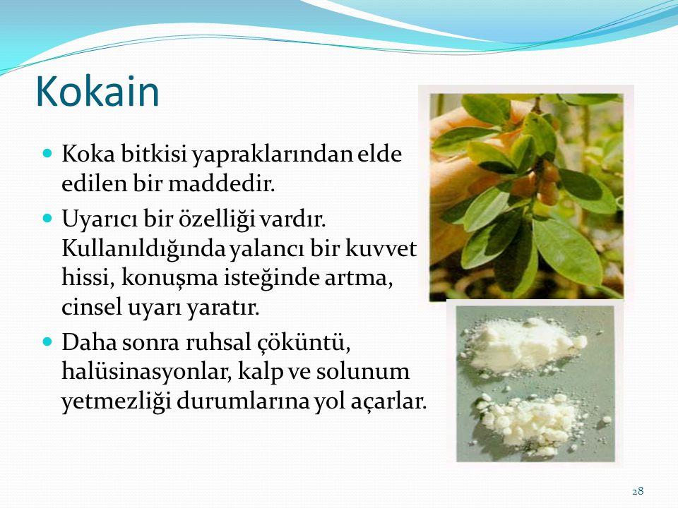 Kokain Koka bitkisi yapraklarından elde edilen bir maddedir. Uyarıcı bir özelliği vardır. Kullanıldığında yalancı bir kuvvet hissi, konuşma isteğinde