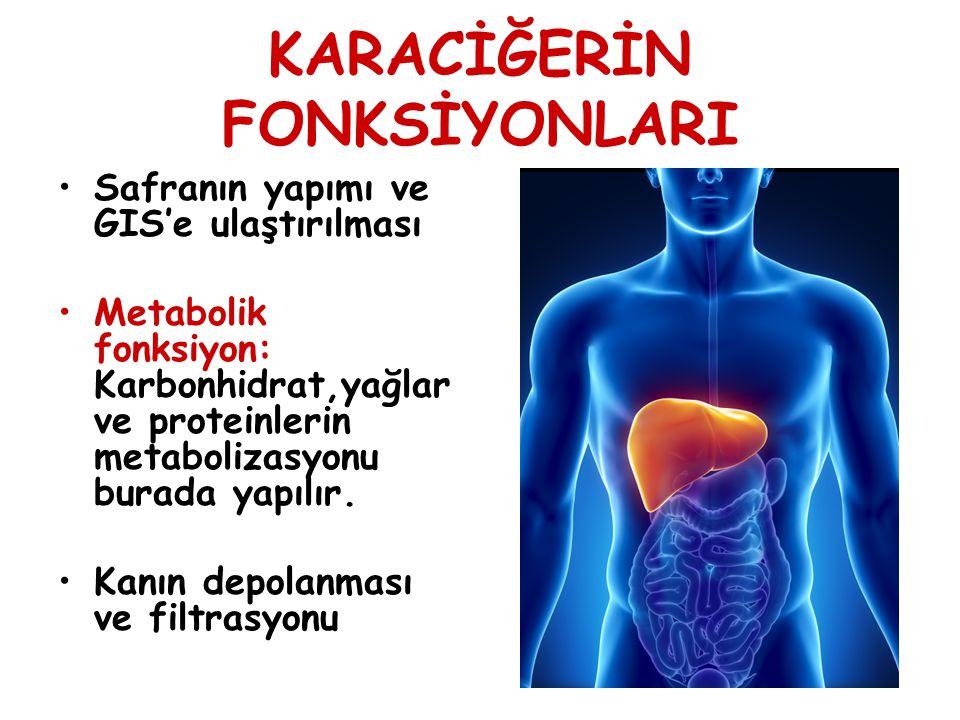 KARACİĞERİN FONKSİYONLARI Vitamin ve minerallerin depo edilmesi: ADEK, B12, Fe ve Bakır burada depo edilir.