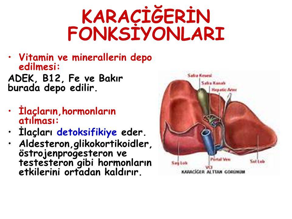 KARACİĞERİN FONKSİYONLARI Vitamin ve minerallerin depo edilmesi: ADEK, B12, Fe ve Bakır burada depo edilir. İlaçların,hormonların atılması: İlaçları d