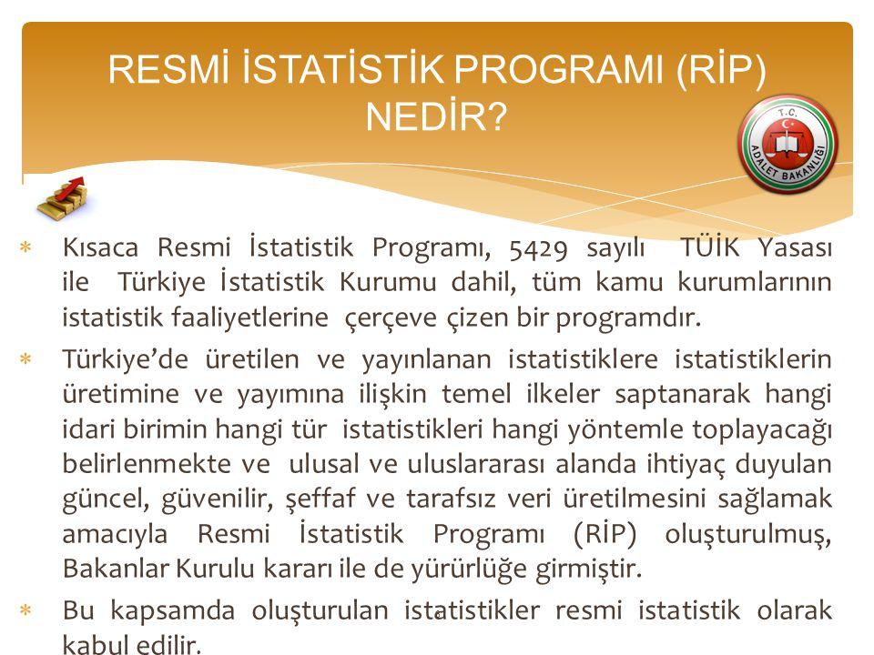RESMİ İSTATİSTİK PROGRAMI (RİP) NEDİR.