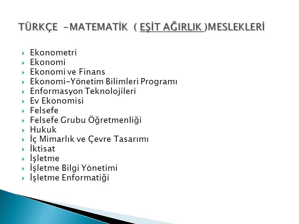  Ekonometri  Ekonomi  Ekonomi ve Finans  Ekonomi-Yönetim Bilimleri Programı  Enformasyon Teknolojileri  Ev Ekonomisi  Felsefe  Felsefe Grubu Ö