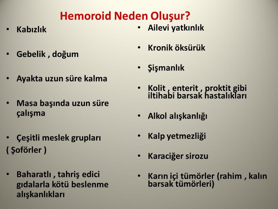 Hemoroid Neden Oluşur.