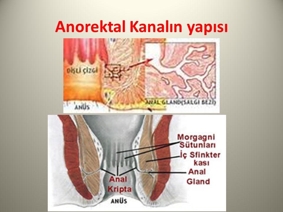Anorektal Hastalıklarda Hemşirelik Tanıları Defekasyon esnasında ağrı olması nedeniyle dışkılama işleminin ertelenmesi ile ilişkili konstipasyon Cerrahi, mahremiyet ve utanma ile ilişkili anksiyete Ameliyat sonrasında sfinkter spazmı ve anorektal hastalığa bağlı anorektal bölgenin aşırı hassasiyeti, basınç altında olması ve irritasyon ile ilişkili ağrı Ağrı korkusu ve ameliyat sonrası refleks spazm ile ilişkili idrar retansiyonu