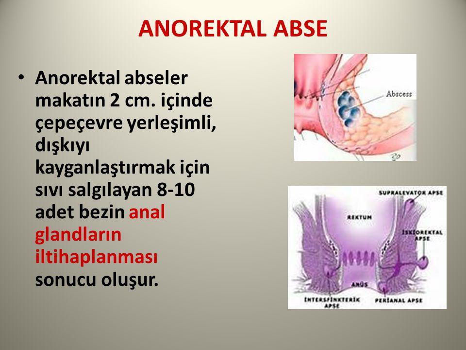 ANOREKTAL ABSE Anorektal abseler makatın 2 cm.