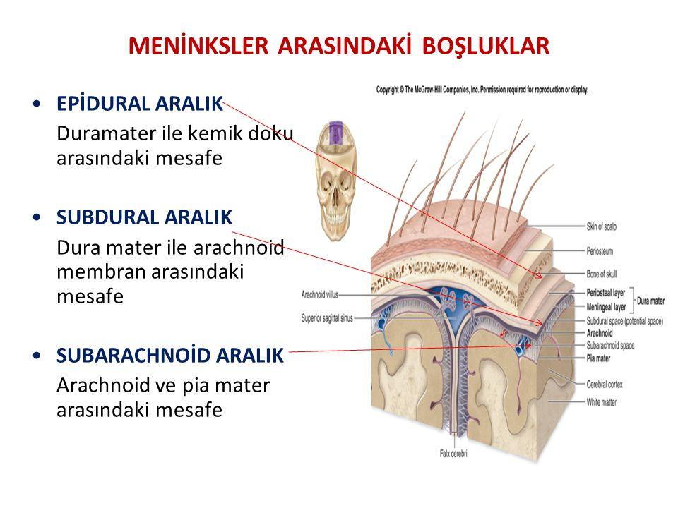 MENİNKSLER ARASINDAKİ BOŞLUKLAR EPİDURAL ARALIK Duramater ile kemik doku arasındaki mesafe SUBDURAL ARALIK Dura mater ile arachnoid membran arasındaki