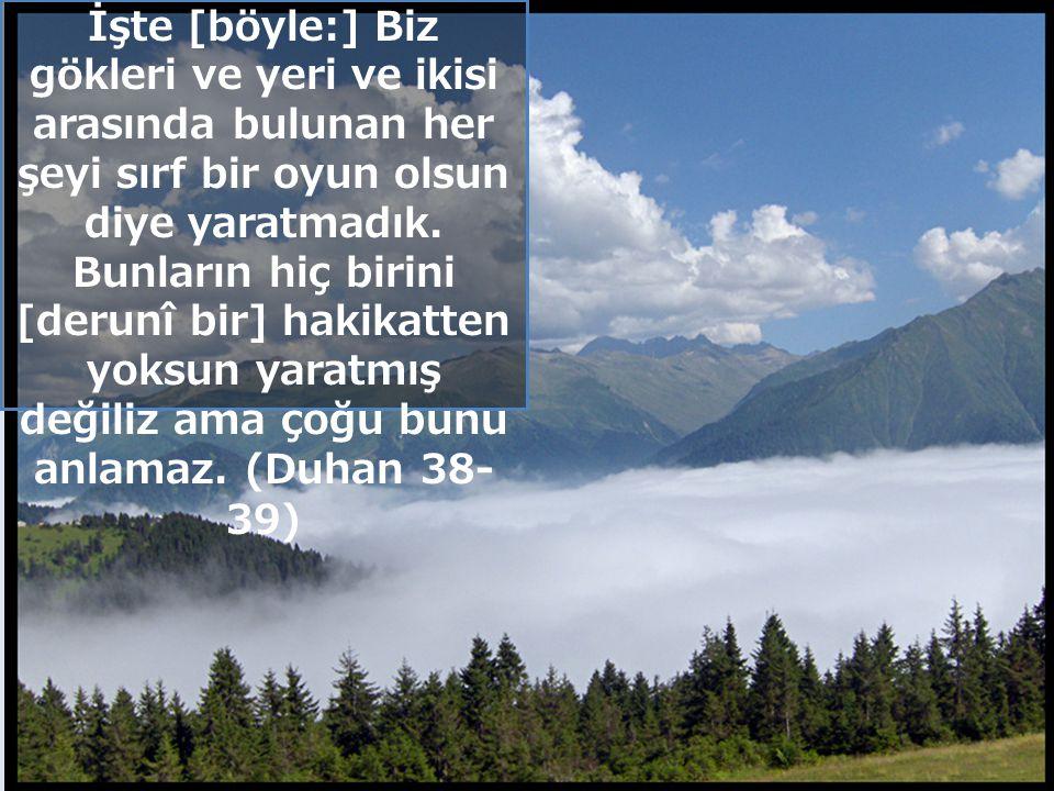 İnsa n Allah'a kendisin e topluma hayvanla ra bitkilere tabiata karşı sorumlud ur İnsanın Sorumluluğu www.muhammetyilmaz.com