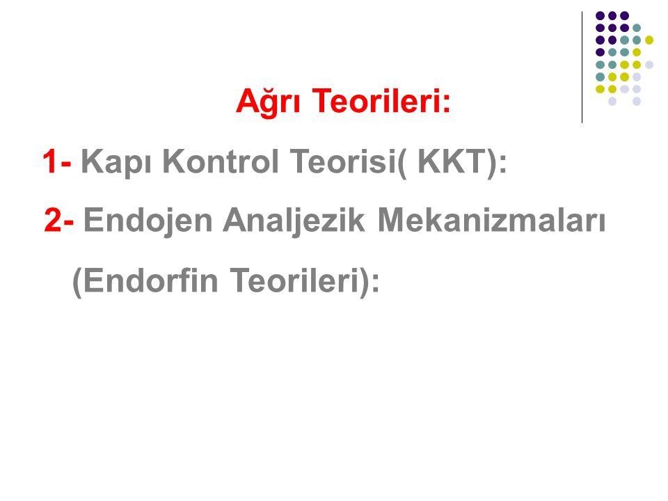 Ağrı Teorileri: 1- Kapı Kontrol Teorisi( KKT): 2- Endojen Analjezik Mekanizmaları (Endorfin Teorileri):