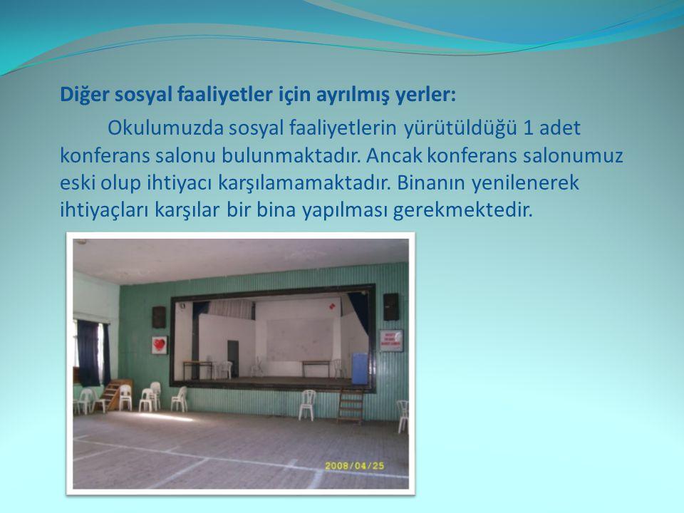 Diğer sosyal faaliyetler için ayrılmış yerler: Okulumuzda sosyal faaliyetlerin yürütüldüğü 1 adet konferans salonu bulunmaktadır.