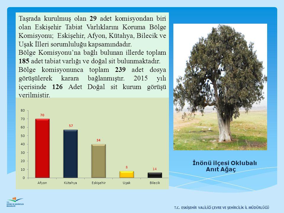 İnönü ilçesi Oklubalı Anıt Ağaç Taşrada kurulmuş olan 29 adet komisyondan biri olan Eskişehir Tabiat Varlıklarını Koruma Bölge Komisyonu; Eskişehir, A
