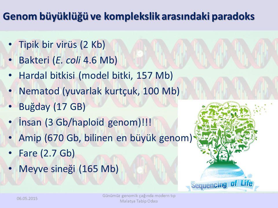 Tipik bir virüs (2 Kb) Bakteri (E. coli 4.6 Mb) Hardal bitkisi (model bitki, 157 Mb) Nematod (yuvarlak kurtçuk, 100 Mb) Buğday (17 GB) İnsan (3 Gb/hap