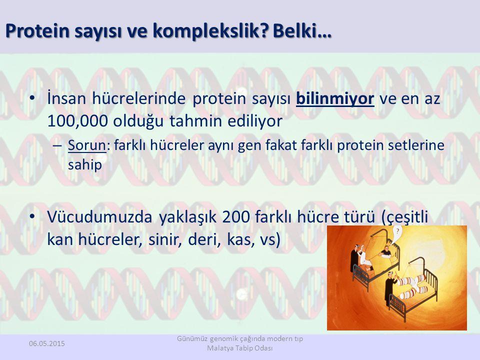 Protein sayısı ve komplekslik? Belki… İnsan hücrelerinde protein sayısı bilinmiyor ve en az 100,000 olduğu tahmin ediliyor – Sorun: farklı hücreler ay