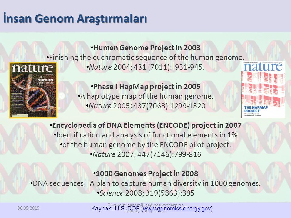 İnsan Genom Araştırmaları Human Genome Project in 2003 Finishing the euchromatic sequence of the human genome. Nature 2004; 431 (7011): 931-945. Phase