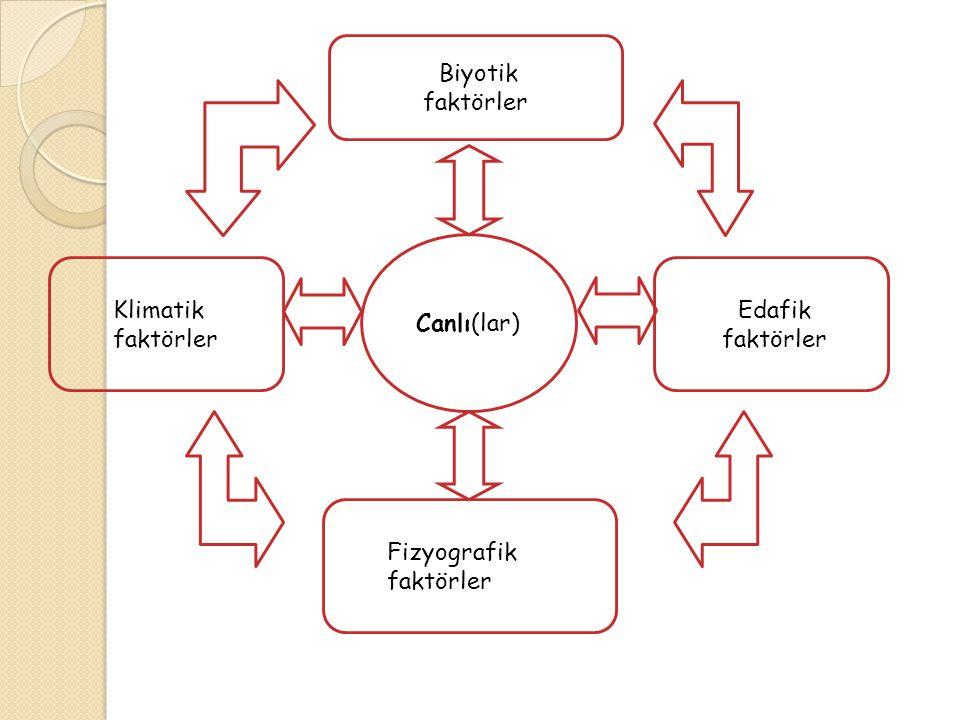 Canlı(lar) Edafik faktörler Biyotik faktörler Fizyografik faktörler Klimatik faktörler