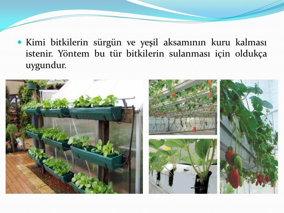 Kimi bitkilerin sürgün ve yeşil aksamının kuru kalması istenir. Yöntem bu tür bitkilerin sulanması için oldukça uygundur.