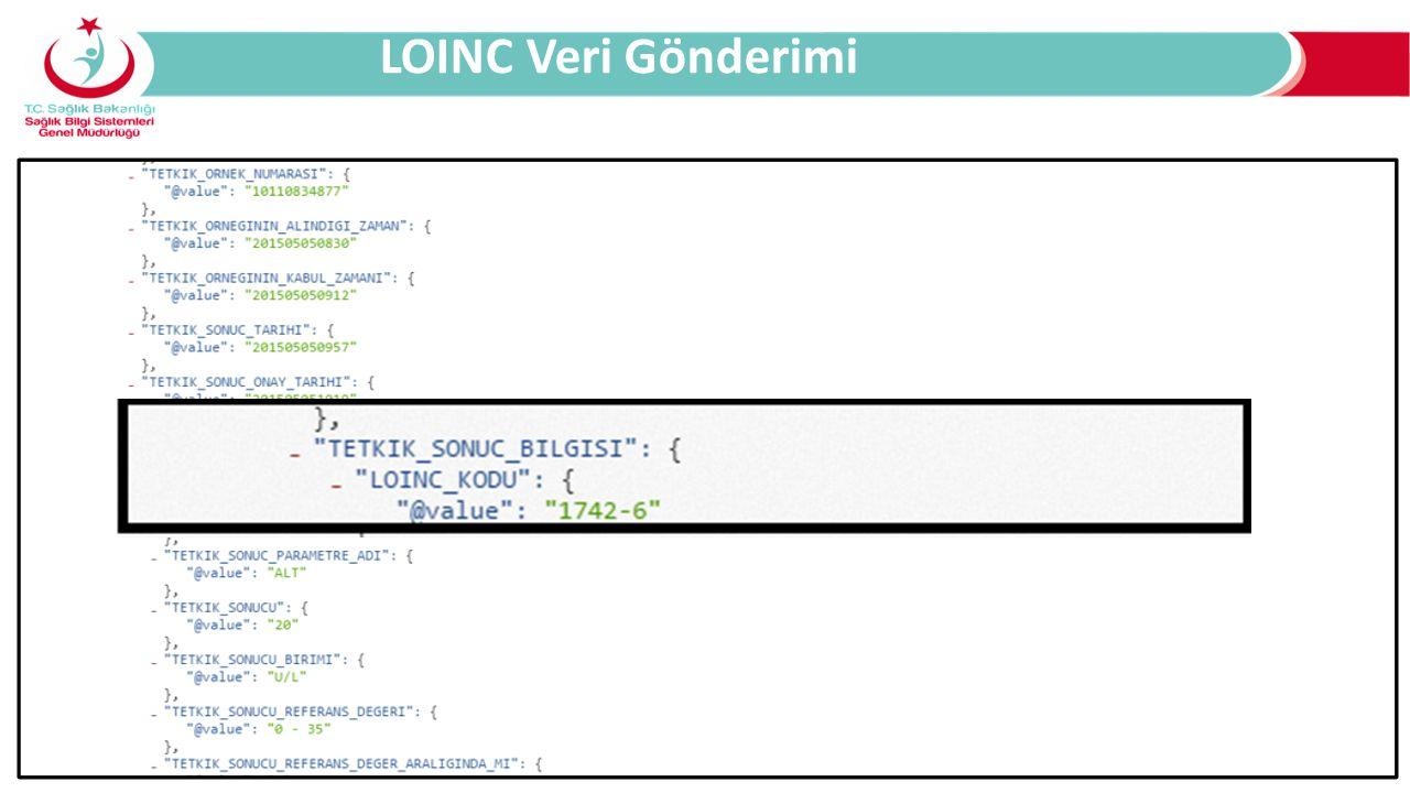 LOINC Veri Gönderimi