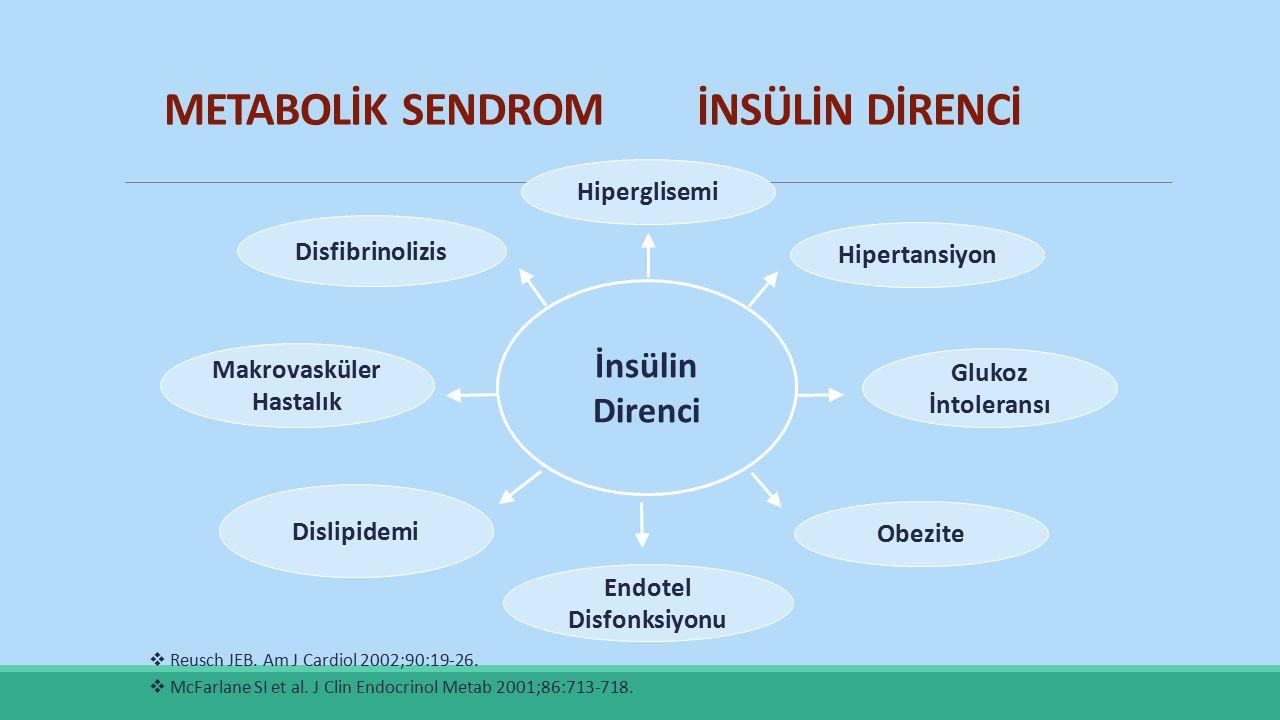 İnsülin Direnci Dislipidemi Obezite Hipertansiyon Disfibrinolizis Hiperglisemi Endotel Disfonksiyonu Makrovasküler Hastalık Glukoz İntoleransı  Reusc