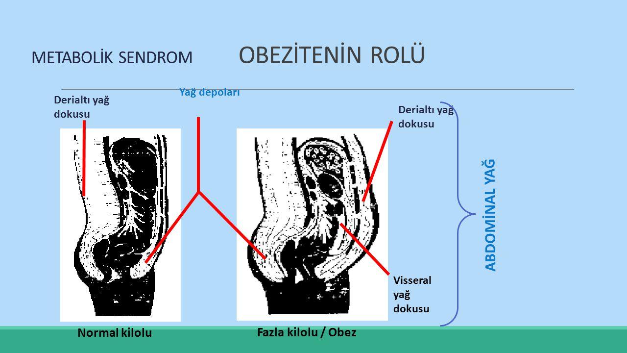 Derialtı yağ dokusu Yağ depoları Normal kilolu Fazla kilolu / Obez Visseral yağ dokusu ABDOMİNAL YAĞ METABOLİK SENDROM OBEZİTENİN ROLÜ