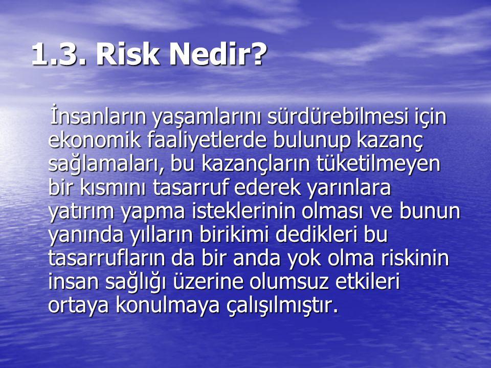 1.3. Risk Nedir? İnsanların yaşamlarını sürdürebilmesi için ekonomik faaliyetlerde bulunup kazanç sağlamaları, bu kazançların tüketilmeyen bir kısmını
