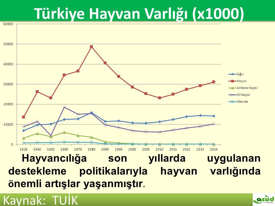 Türkiye hayvan varlığı (x1000) Türkiye Hayvan Varlığı (x1000) Kaynak: TUİK Hayvancılığa son yıllarda uygulanan destekleme politikalarıyla hayvan varlı