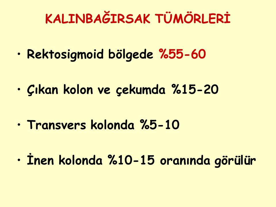 KOLON CA 1
