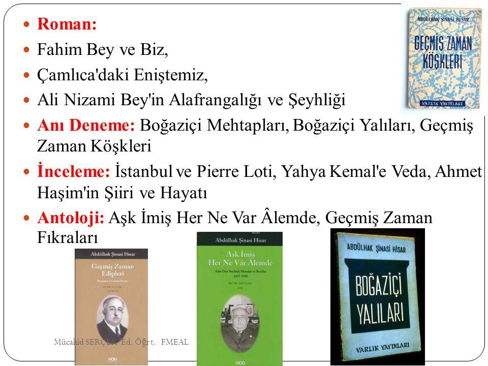 Roman: Fahim Bey ve Biz, Çamlıca'daki Eniştemiz, Ali Nizami Bey'in Alafrangalığı ve Şeyhliği Anı Deneme: Boğaziçi Mehtapları, Boğaziçi Yalıları, Geçmi