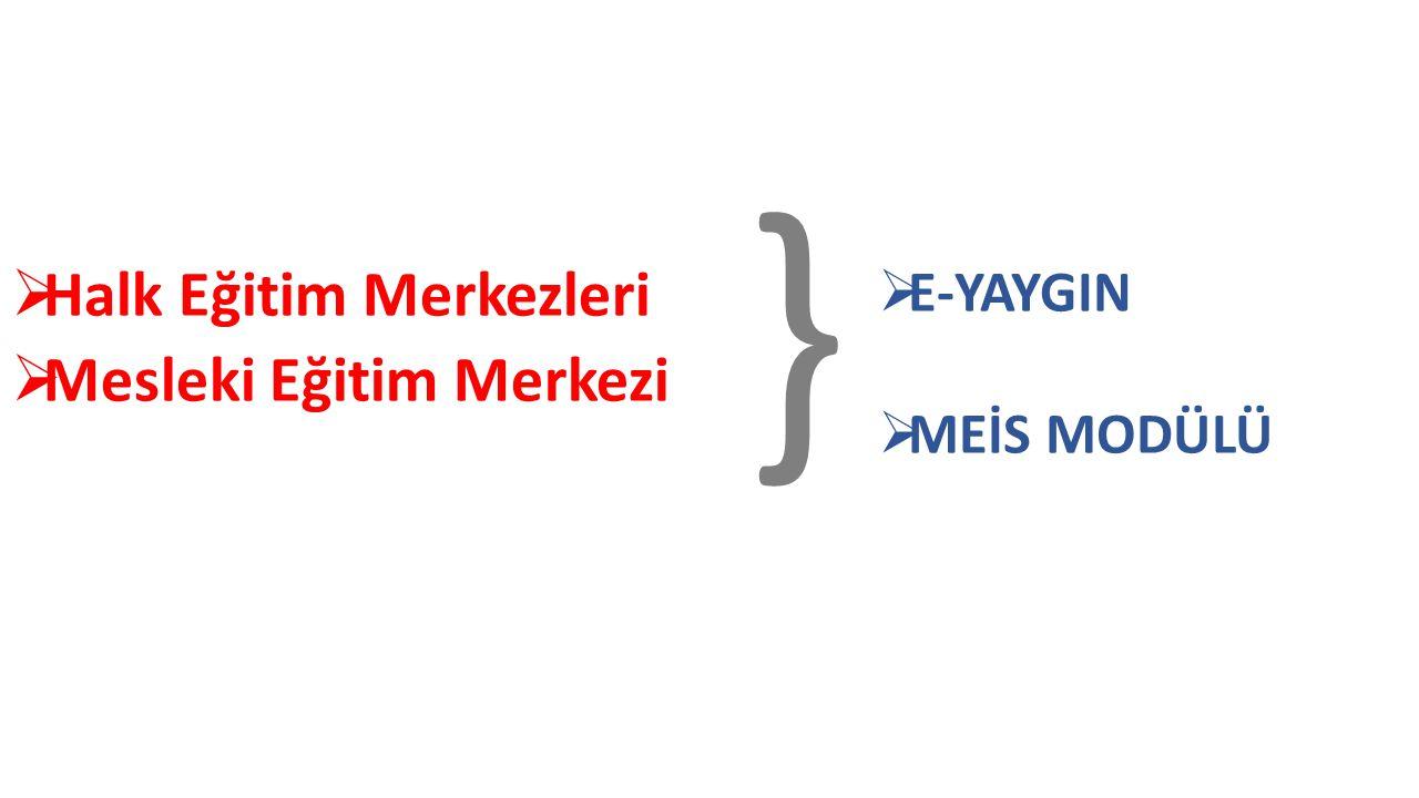  Halk Eğitim Merkezleri  Mesleki Eğitim Merkezi }  E-YAYGIN  MEİS MODÜLÜ