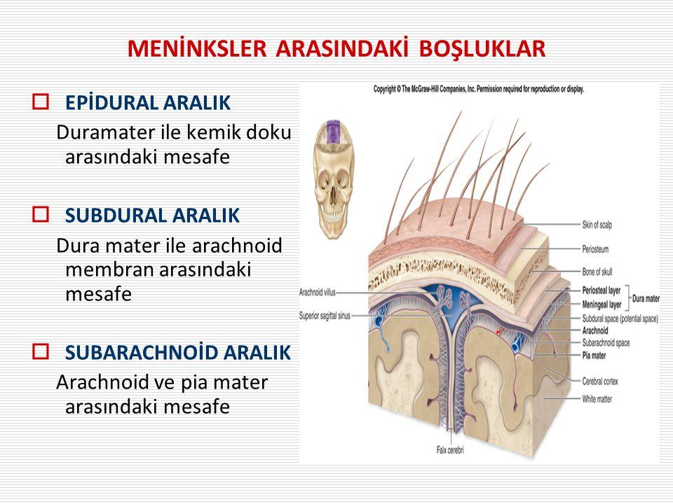 MENİNKSLER ARASINDAKİ BOŞLUKLAR  EPİDURAL ARALIK Duramater ile kemik doku arasındaki mesafe  SUBDURAL ARALIK Dura mater ile arachnoid membran arasın