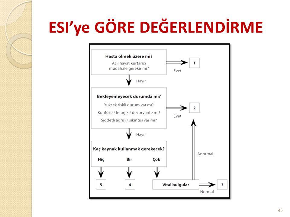 ESI'ye GÖRE DEĞERLENDİRME 45