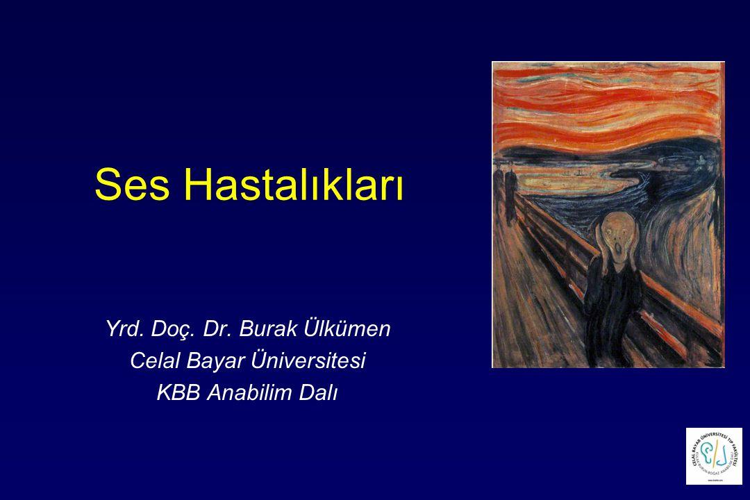 Ses Hastalıkları Yrd. Doç. Dr. Burak Ülkümen Celal Bayar Üniversitesi KBB Anabilim Dalı