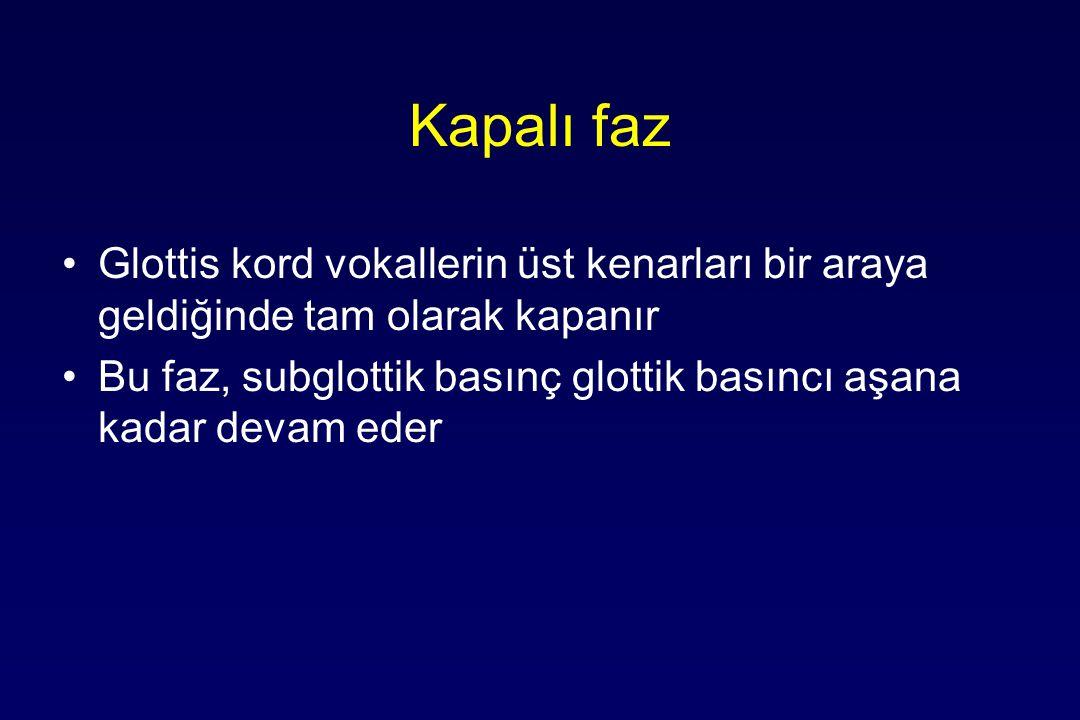 Kapalı faz Glottis kord vokallerin üst kenarları bir araya geldiğinde tam olarak kapanır Bu faz, subglottik basınç glottik basıncı aşana kadar devam eder