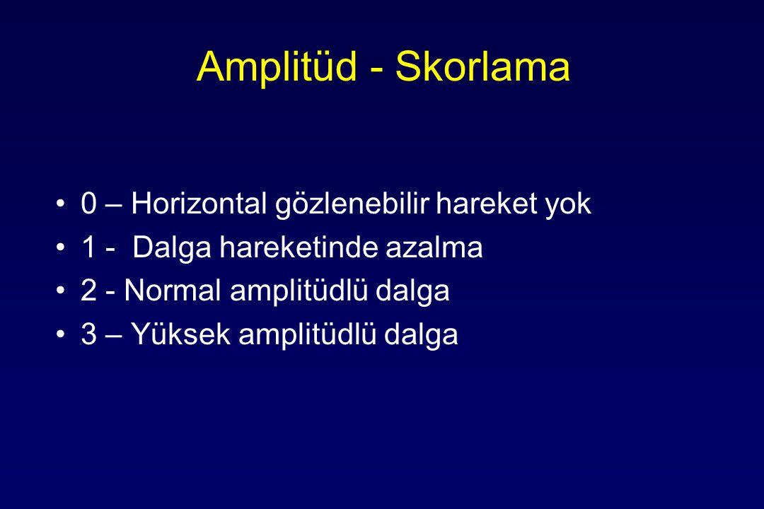 Amplitüd - Skorlama 0 – Horizontal gözlenebilir hareket yok 1 - Dalga hareketinde azalma 2 - Normal amplitüdlü dalga 3 – Yüksek amplitüdlü dalga