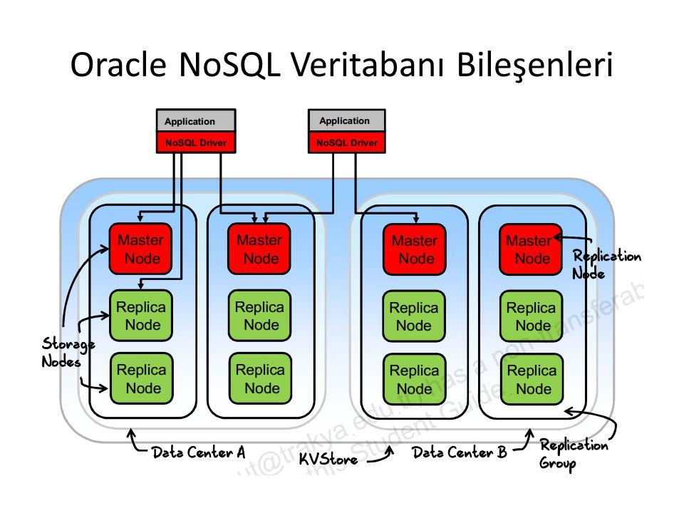 Oracle NoSQL Veritabanı Bileşenleri