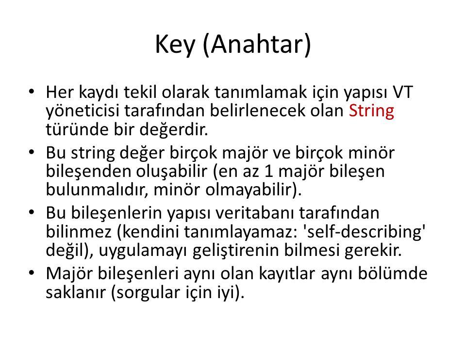 Key (Anahtar) Her kaydı tekil olarak tanımlamak için yapısı VT yöneticisi tarafından belirlenecek olan String türünde bir değerdir. Bu string değer bi