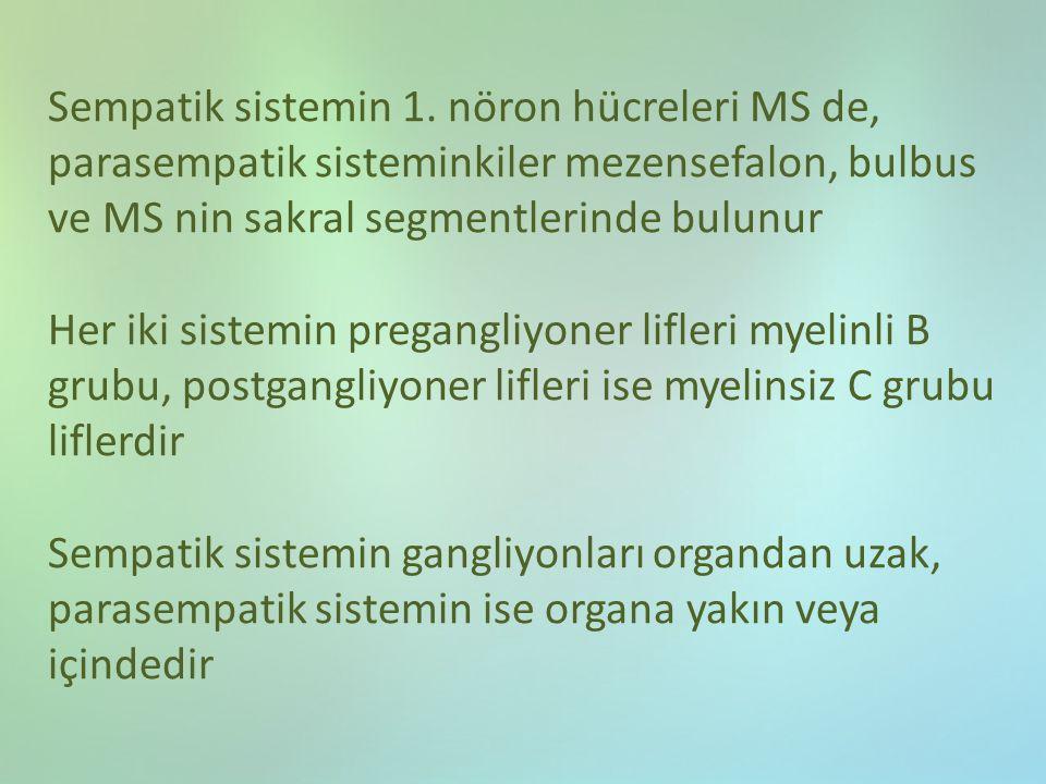 Sempatik sistemin 1. nöron hücreleri MS de, parasempatik sisteminkiler mezensefalon, bulbus ve MS nin sakral segmentlerinde bulunur Her iki sistemin p