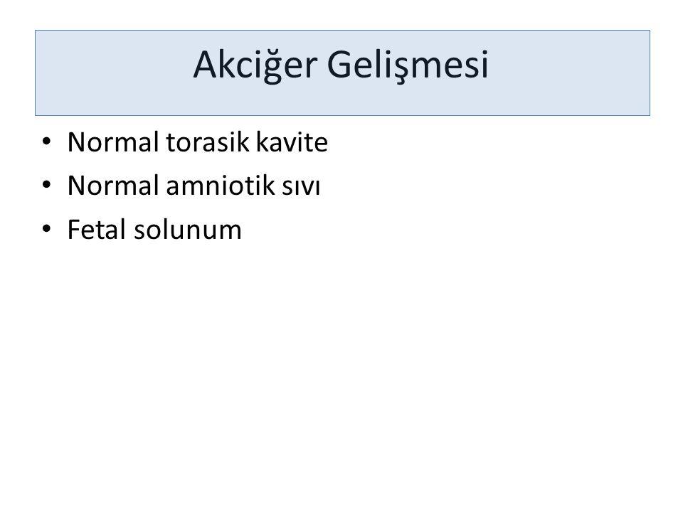 Akciğer Gelişmesi Normal torasik kavite Normal amniotik sıvı Fetal solunum