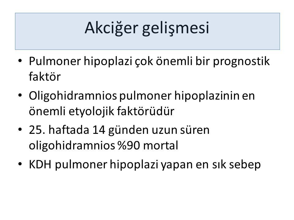 Akciğer gelişmesi Pulmoner hipoplazi çok önemli bir prognostik faktör Oligohidramnios pulmoner hipoplazinin en önemli etyolojik faktörüdür 25. haftada