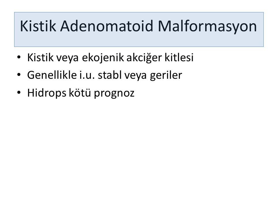 Kistik Adenomatoid Malformasyon Kistik veya ekojenik akciğer kitlesi Genellikle i.u. stabl veya geriler Hidrops kötü prognoz
