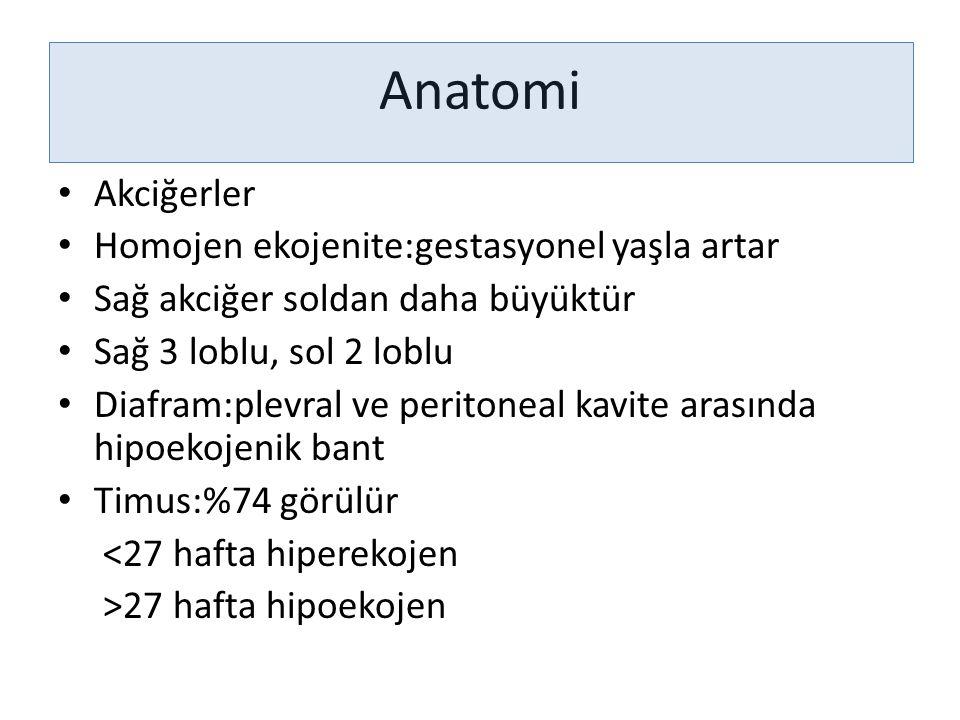 Anatomi Akciğerler Homojen ekojenite:gestasyonel yaşla artar Sağ akciğer soldan daha büyüktür Sağ 3 loblu, sol 2 loblu Diafram:plevral ve peritoneal k