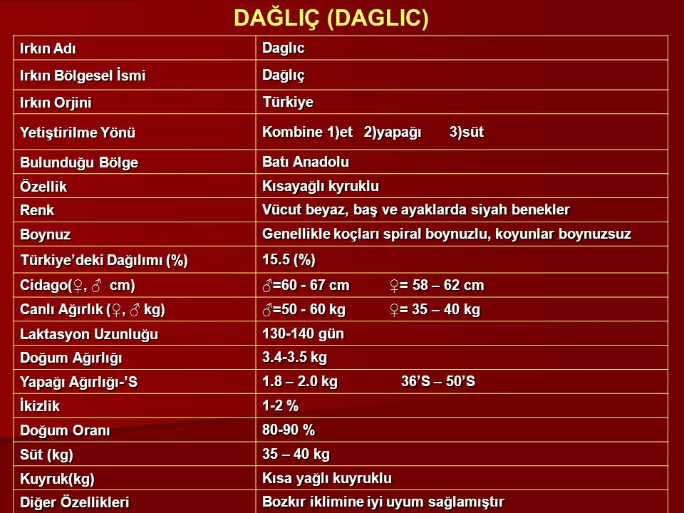 Irkın Adı Daglıc Irkın Bölgesel İsmi Dağlıç Irkın Orjini Türkiye Yetiştirilme Yönü Kombine 1)et 2)yapağı 3)süt Bulunduğu Bölge Batı Anadolu Özellik Kı