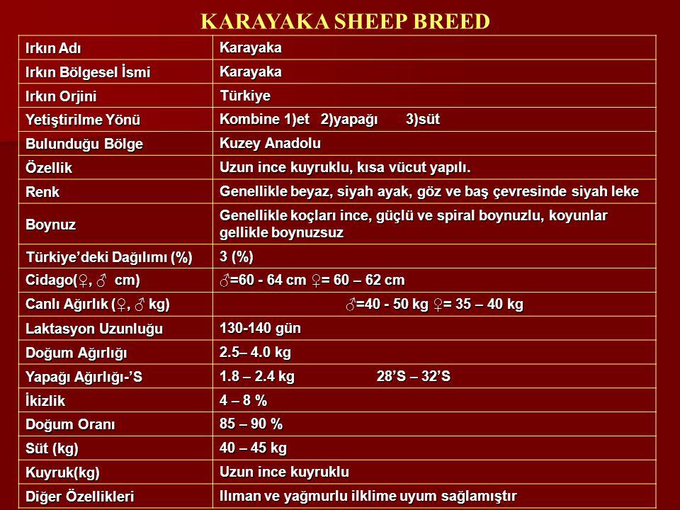 Irkın Adı Karayaka Irkın Bölgesel İsmi Karayaka Irkın Orjini Türkiye Yetiştirilme Yönü Kombine 1)et 2)yapağı 3)süt Bulunduğu Bölge Kuzey Anadolu Özell