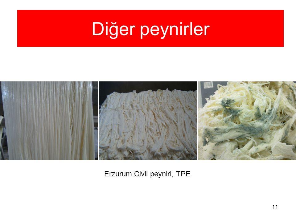 11 Diğer peynirler Erzurum Civil peyniri, TPE