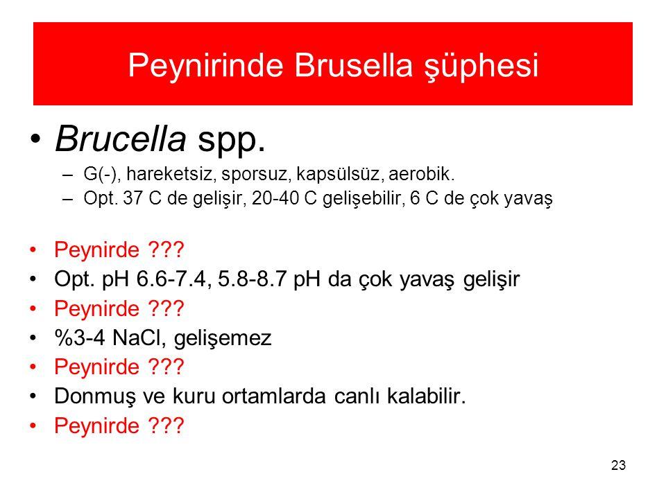 23 Peynirinde Brusella şüphesi Brucella spp. –G(-), hareketsiz, sporsuz, kapsülsüz, aerobik. –Opt. 37 C de gelişir, 20-40 C gelişebilir, 6 C de çok ya