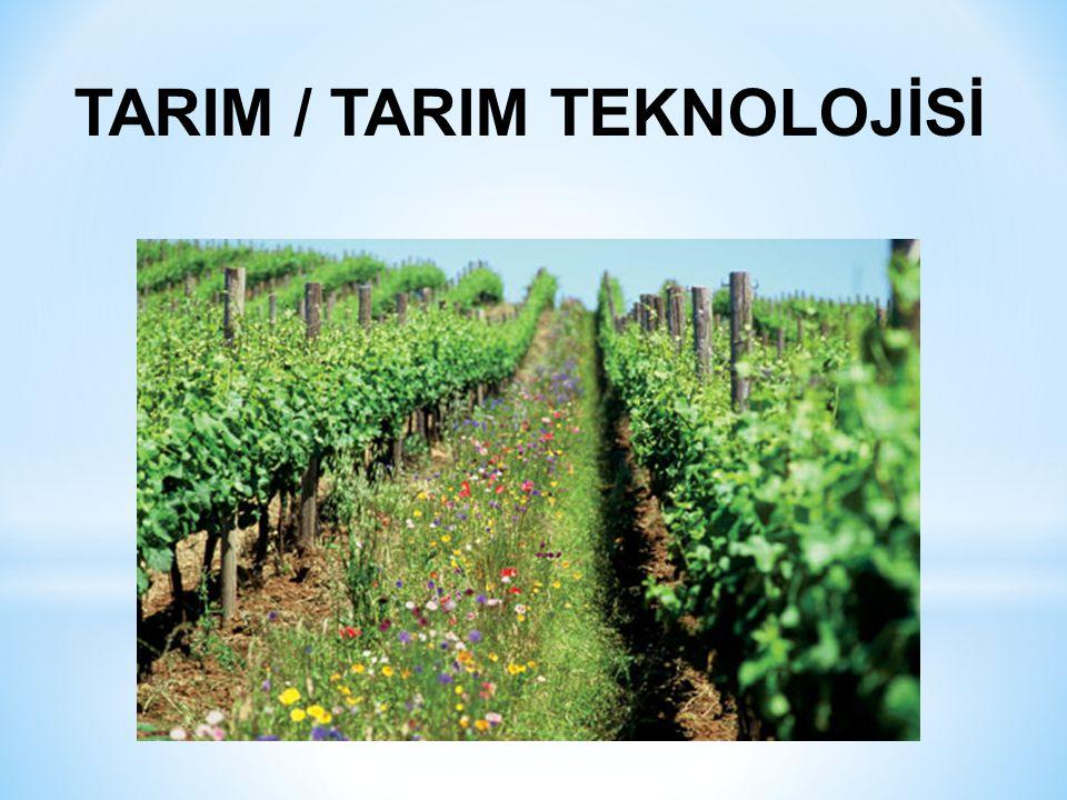 TARIM / TARIM TEKNOLOJİSİ
