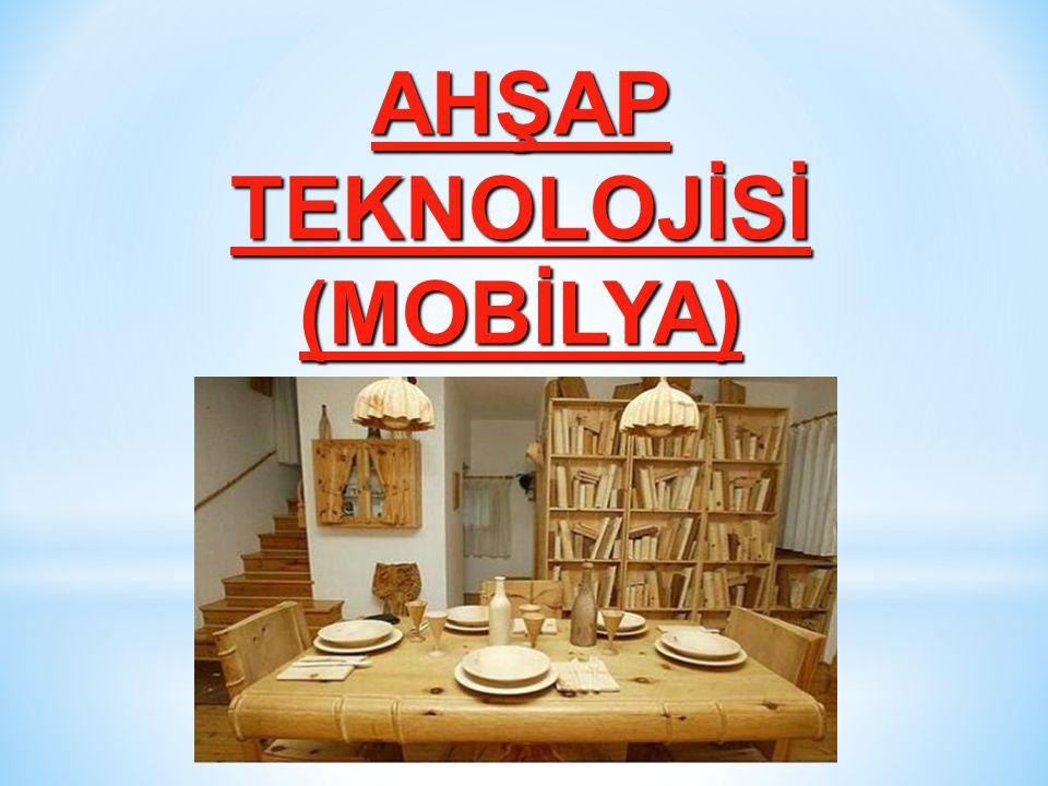 AHŞAP TEKNOLOJİSİ (MOBİLYA)