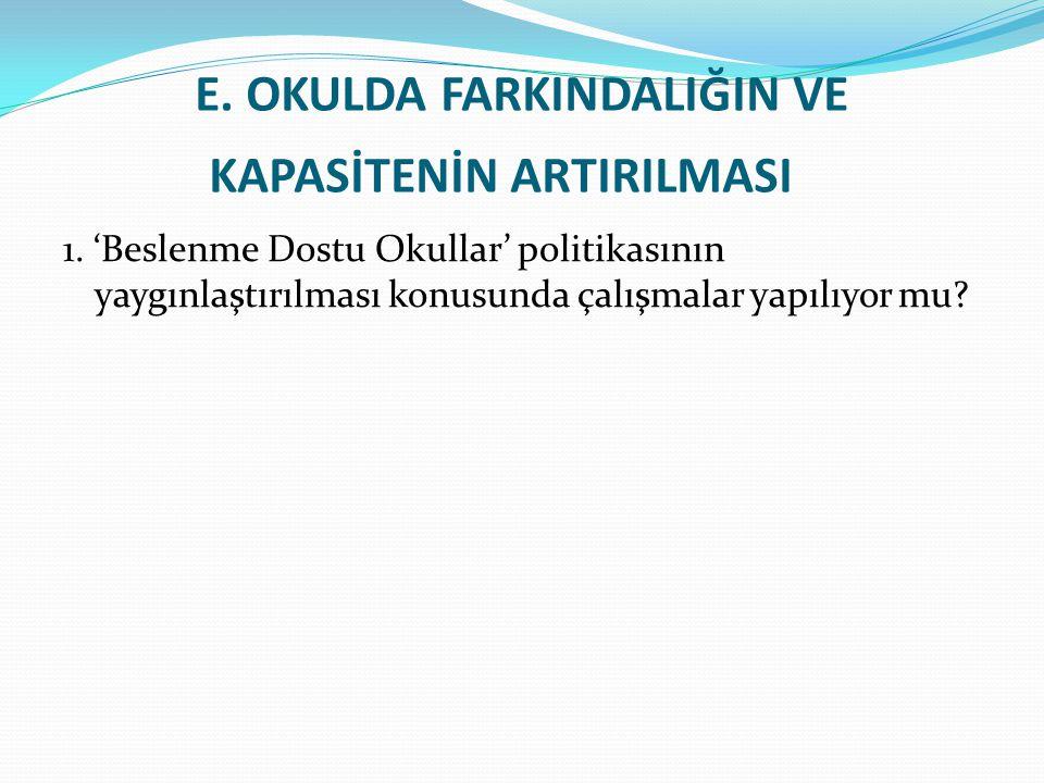 E.OKULDA FARKINDALIĞIN VE KAPASİTENİN ARTIRILMASI 1.