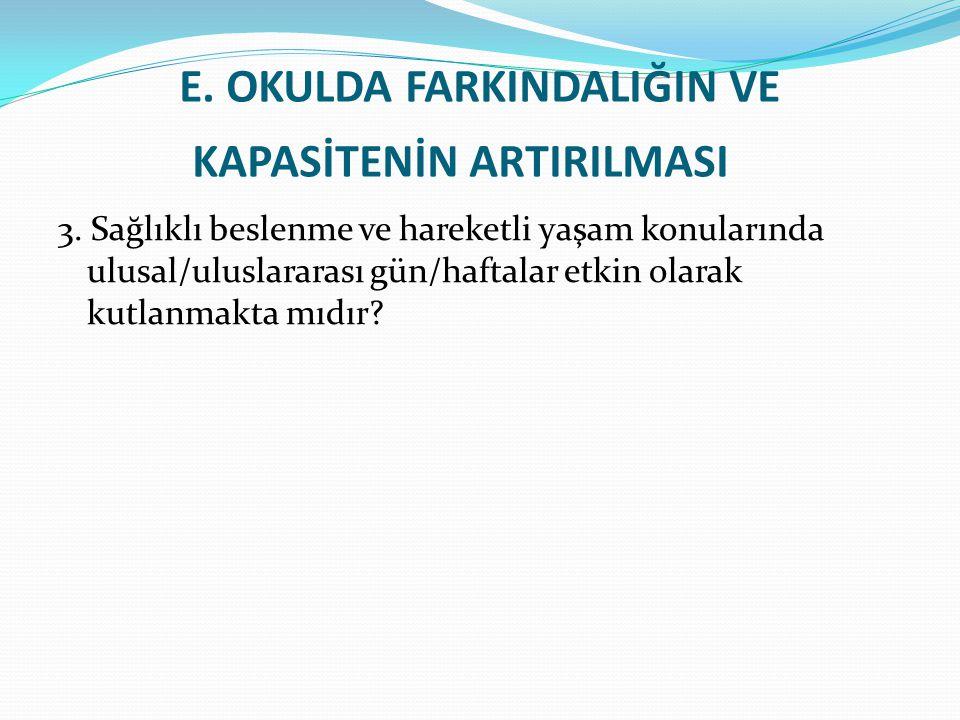 E.OKULDA FARKINDALIĞIN VE KAPASİTENİN ARTIRILMASI 3.